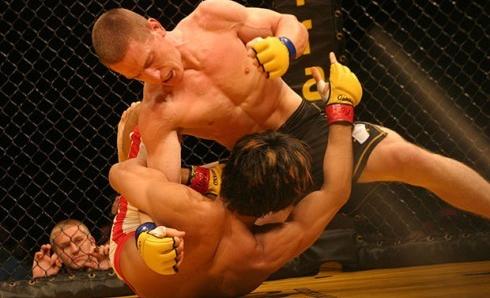 Смесени бойни изкуства - статистическо проучване